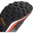 Pánské boty Adidas Terrex Agravic XT GORE-TEX