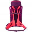 Dámský batoh Salewa Alp Trainer 30+3 WS