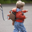 Dětský batoh LittleLife Dinosaur