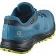 Pánské boty Salomon Trailster 2 Gtx