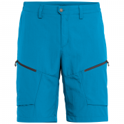 Pánské kraťasy Salewa Puez Dry M Shorts
