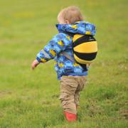Dětský batoh LittleLife Toddler Bee
