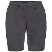 Dámské kraťasy Salewa Puez Dry W Shorts