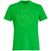 Pánské triko Salewa Alta Via Dri-Rel M S/S Tee - classic green melange