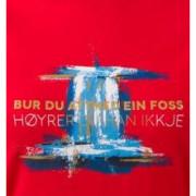 Pánské triko Bergans Foss Tee-detail potisku
