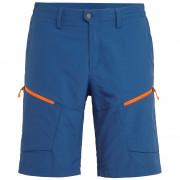 Pánské kraťasy Salewa Puez Dry M Shorts - poseidon