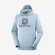 Mikina Salomon Outlife Logo Pullover Hoodie U Summer