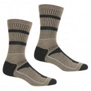 Pánské ponožky Regatta Samaris3SeasonSck