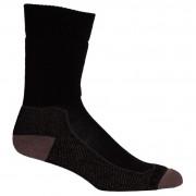 Pánské ponožky Icebreaker Mens Hike+ Medium Crew