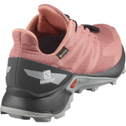 Dámské boty Salomon Supercross Blast GTX W